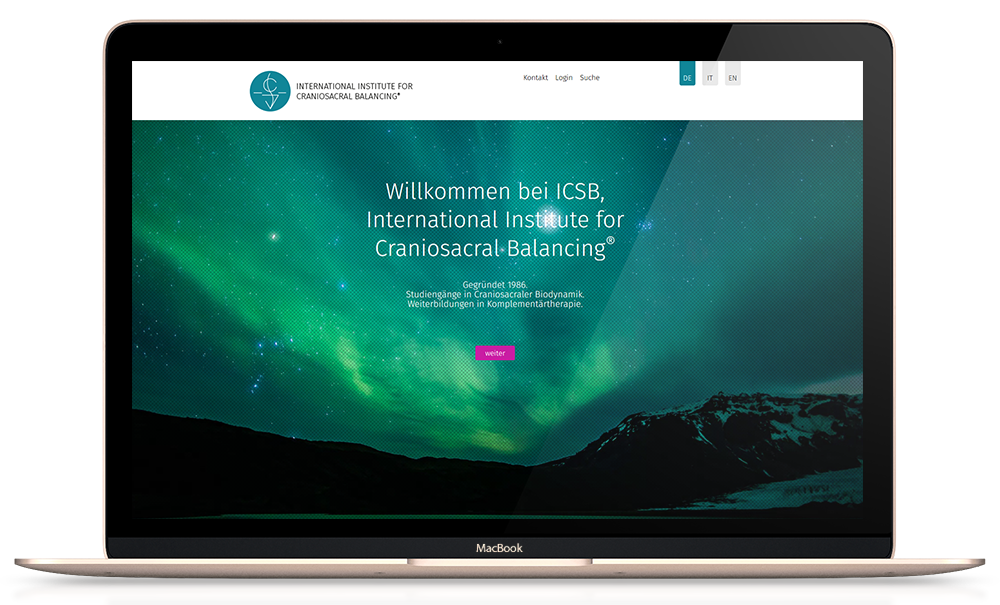 Responsive Webseite icsb.ch